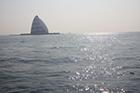 東京湾風の塔散骨05