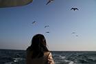 東京湾みなとみらい横浜港エリア03